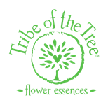 Tribe of the tree logo